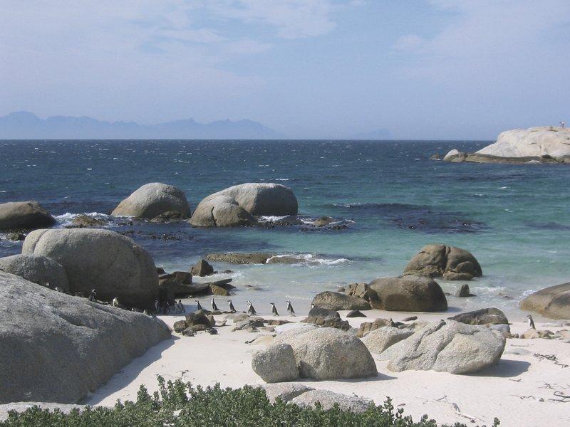 Suedafrika, Kapstadt, www.freeimages.com, michael antrag